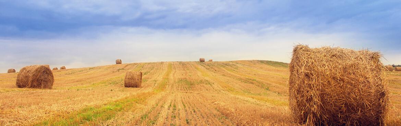 5c8c9673168d774 - GPS Tracker für Land-, Agrar- & Forstwirtschaft